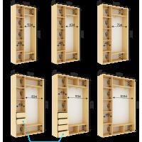 Шкаф на 2 двери , глубина 450мм высота 2200мм